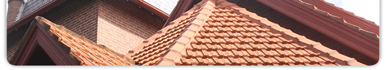Rapid Roof Repairs - the roof repairs specialist