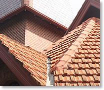 Rapid Roof Repairs is the expert in the roof repair & roof maintenance industry